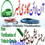 Vehicle Verification{Pk} APK icon