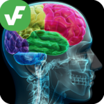 ⭐ Verified Facts - Verifacts APK icon