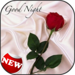 Romantic Good Night Messages APK icon
