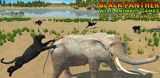 Ultimate Black Panther Animal Safari Survival Game APK : Download v3