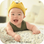 Hindu Baby Names With Meanings APK icon