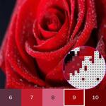 Flower Color By Number, flower coloring pages APK icon