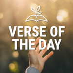 Verse of the Day APK icon