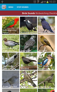 Australian Birds Sounds Free APK : Download v4 4 for Android at