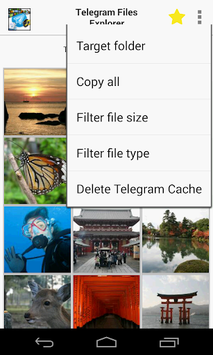 Gallery Explorer for Telegram APK : Download v1 0 2 for