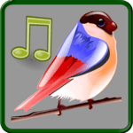 Birds Sounds Relax and Sleep APK icon