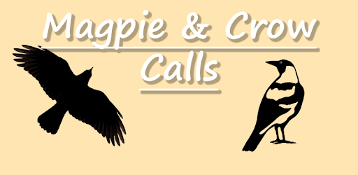 Magpie & Crow Calls APK : Download v18 0 0 for Android at
