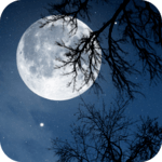 Relax Night ~ Nature Sounds APK icon