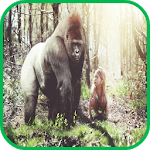 Gorilla Wallpaper APK icon