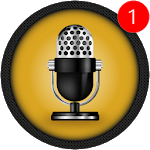 Voice Recorder Pro - Audio recorder APK icon