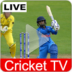 Cricket TV Live : World Cup Streaming 2019 Guide APK icon