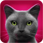 Talking Cat APK icon
