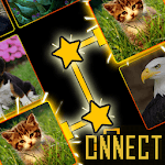 Onnect - Pair Matching Puzzle APK