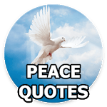 Peace Quotes APK