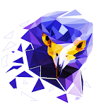 PolyMagic - Polygram Puzzle APK icon