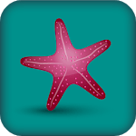 Starfish Reality APK