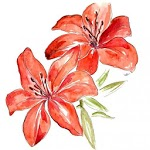 Learn How To Draw Flowers - Step By Step Drawing APK icon