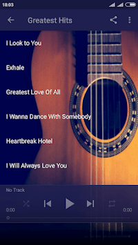 Whitney Houston Songs & Lyrics APK screenshot 2