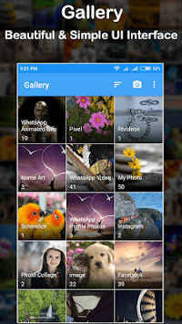 Simple Gallery Apk